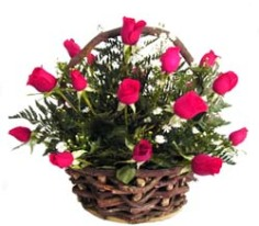 basket of red roses costa rica